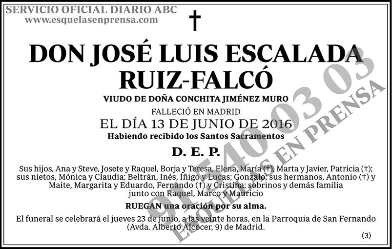 José Luis Escalada Ruiz-Falcó